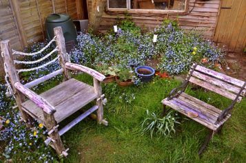 <span>Sunday Morning Tip for May 13:</span> Disguising Unsightly Features In Your Garden
