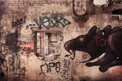 A Look at Invasive Urban Pests