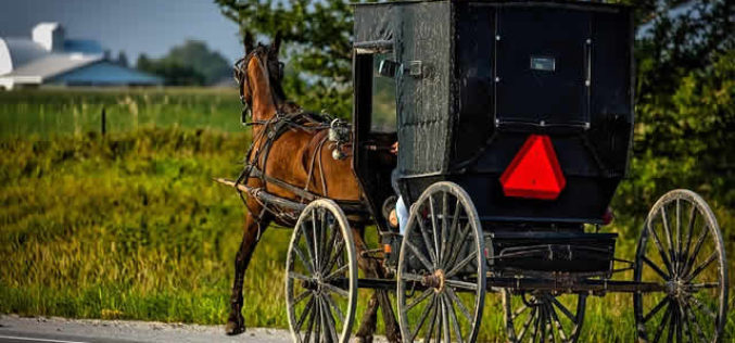 Rising Trends of the Amish Decor Today