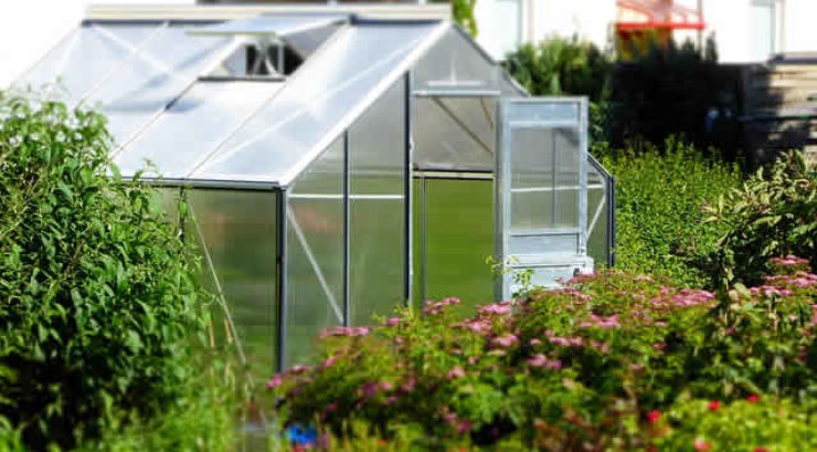3 Types of Greenhouses that will Suit Any Type of Gardener