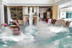 How to Redo and Restore Your Home after a Flood