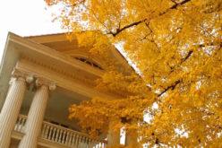 Autumnal Upkeep: Fall Home Maintenance Checklist
