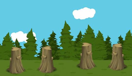 Best Stump Grinding Company