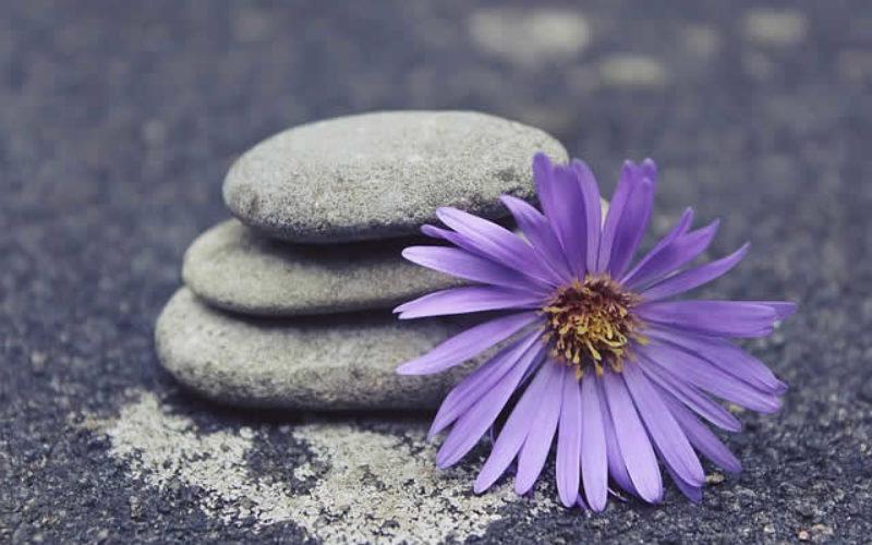8 Ways to Get a Zen Living Room