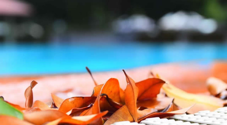 Tools to Use in Pool Cleaning La Verne