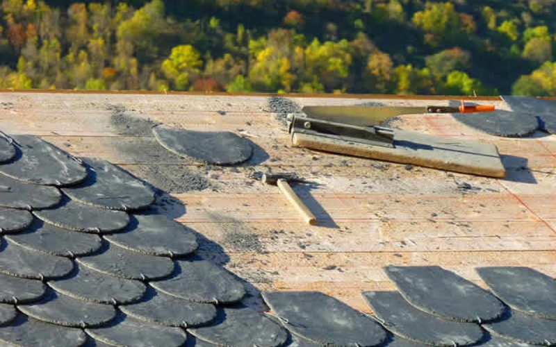 4 Criteria for Choosing a New Roof That Will Stand Up to the Elements