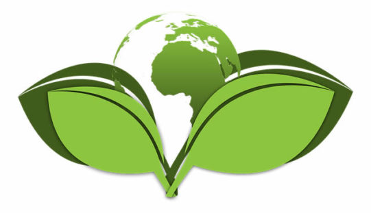 Top 7 Guide to Build Your High Sustainable Eco-Friendly Building