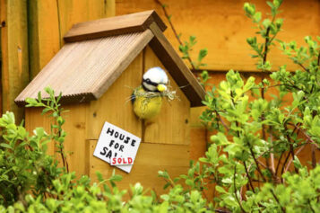 Real Estate Spring Home Improvement Guide