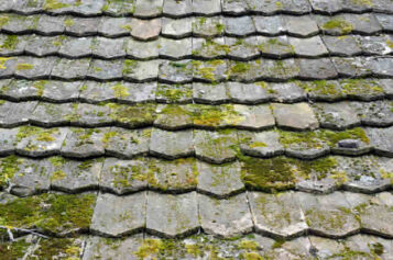 4 Signs That Your Roof Desperately Needs Replacement