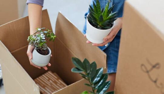 <span>Sunday Morning Tip for July 19:</span> What You Should Get Rid of While Downsizing