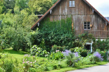 4 Tips for Renovating Your Home Without Ruining Your Landscaping