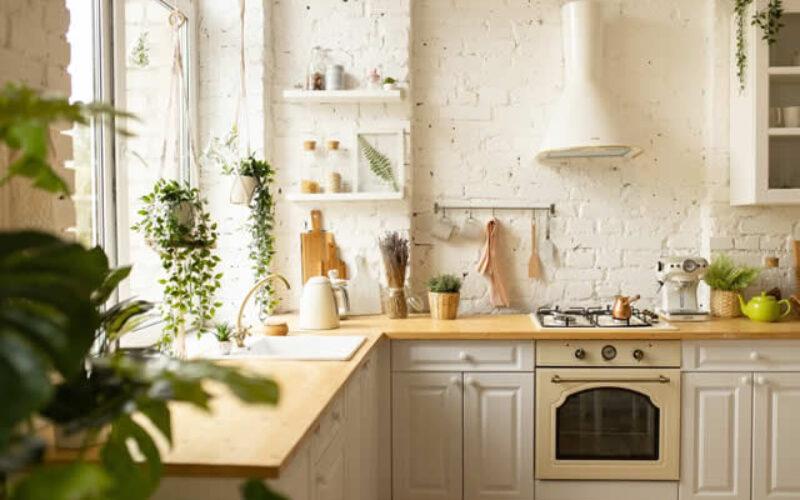 Go Green in Style: A Guide of Eco-Friendly Interior Design