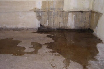 Why Having a Waterproofed Basement is So Important