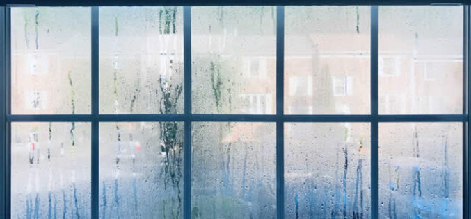 Home Maintenance to Consider When You Live in a Humid Climate
