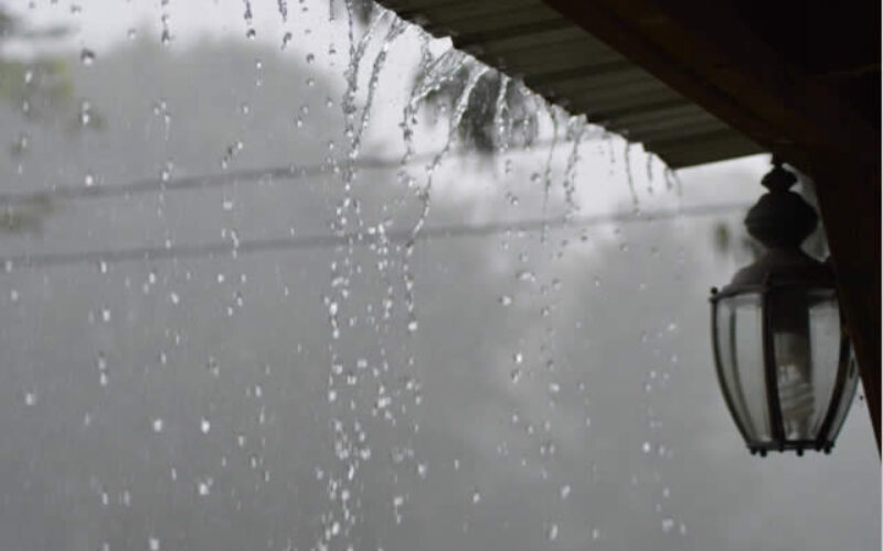 6 Tips For Collecting Rainwater