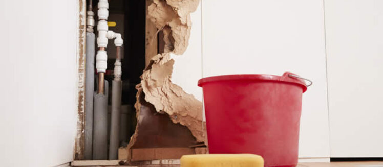 How to Handle Water Damage When Renovating Your Basement