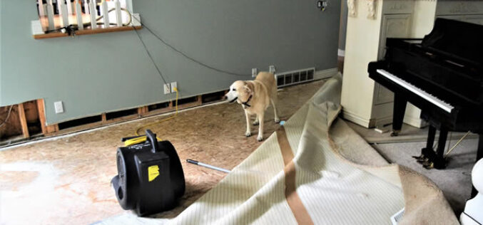 5 Common Causes of Water Damage