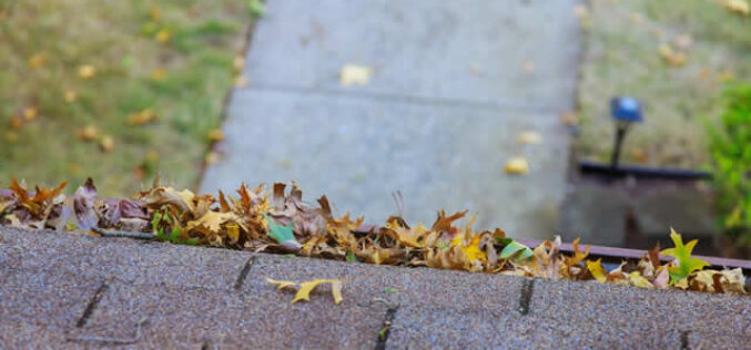 4 Home Repairs to Tackle before This Fall