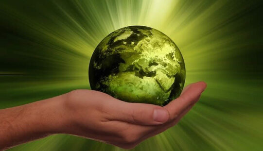 Steps To Help You Live More Sustainably