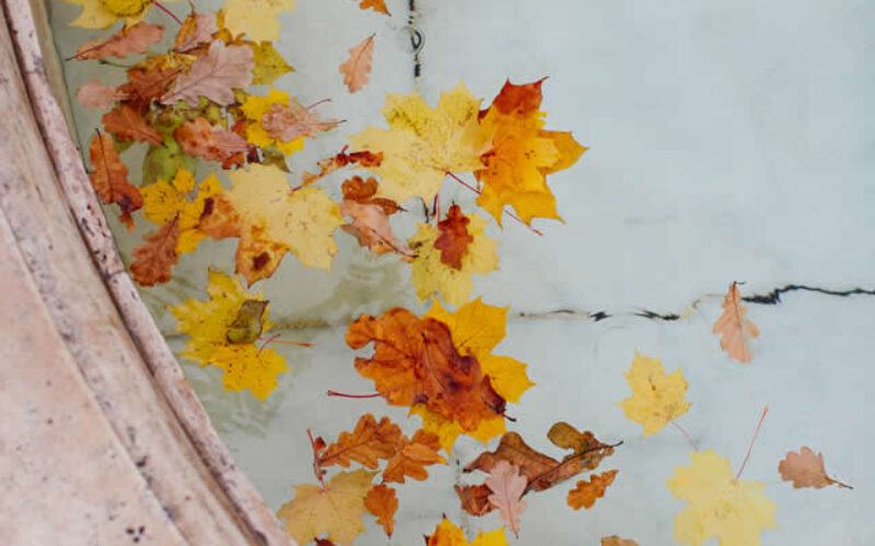 Best Tips for Closing Your In-Ground Pool for Winter