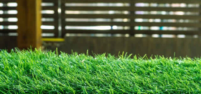 Which Kind of Artificial Grass is Right for Your Home?