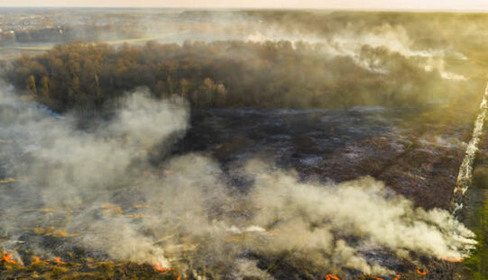 <span>Sunday Morning Tip for Oct 24:</span> How Can We Prevent And Respond To Bushfires