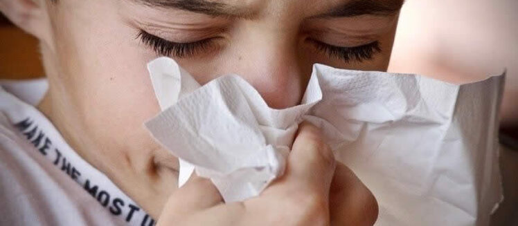 The Most Common Allergens Hiding in Your Home