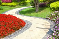 Winding Walkway Through a Garden