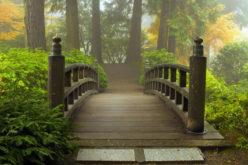 Decorative Garden Bridge Extending Over Landscape Garden