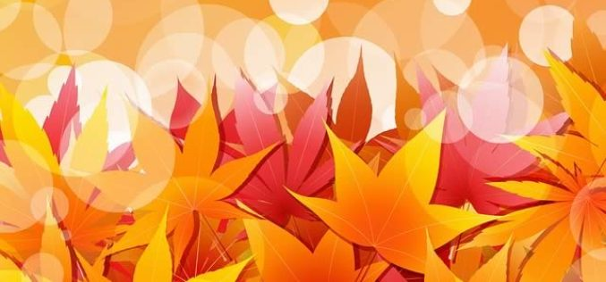 Decorating Ideas for the Approaching Autumn Season