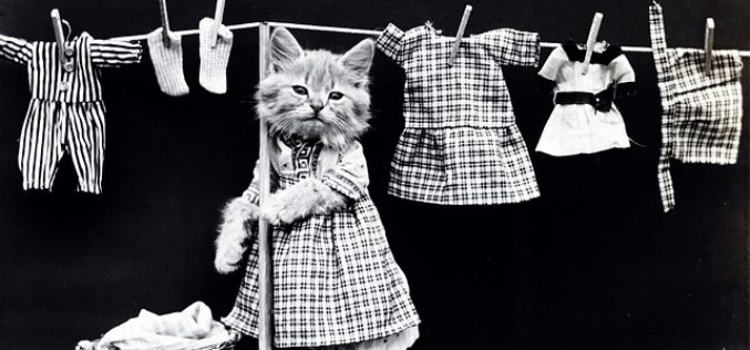 Managing Your Laundry in Style – Maybe Not!