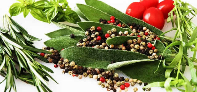 Knowing Your Herbs and Spices in Food Preparation