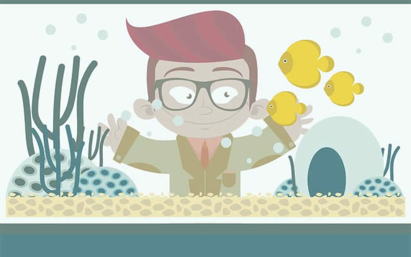 What Is In Your Home Aquarium – Fish or Something Else