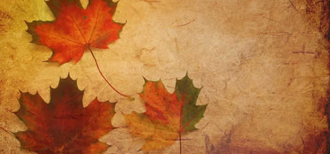 The Fall Season Begins – Here Comes the Beautiful Fall Colors