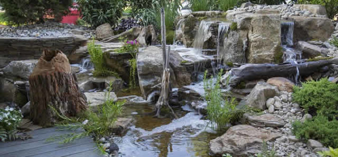 Some Interesting Pond Landscaping Ideas