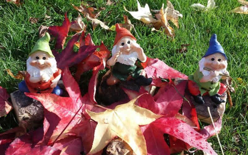 Autumn Gnomes: Perfect Decor for the Fall Season