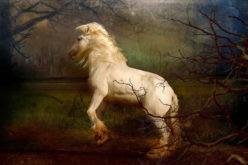 The Headless Horseman – Perfect Happy Halloween Story