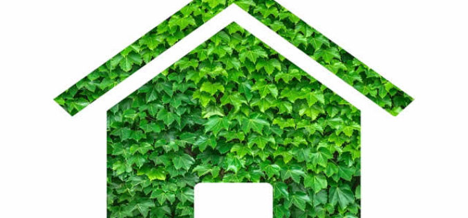 Make Your Home More Eco-Friendly for Summer