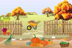 October Begins Today! What Happens In October?