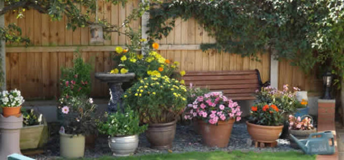 3 Simple Landscape Changes to Renovate Your Garden