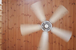 <span>analysis:</span>  Swap Out Your Boring Light Fixtures for Stylish Ceiling Fans