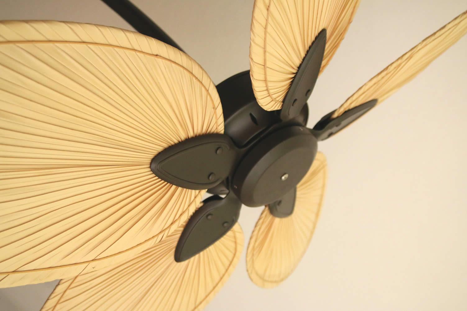 stylish ceiling fans