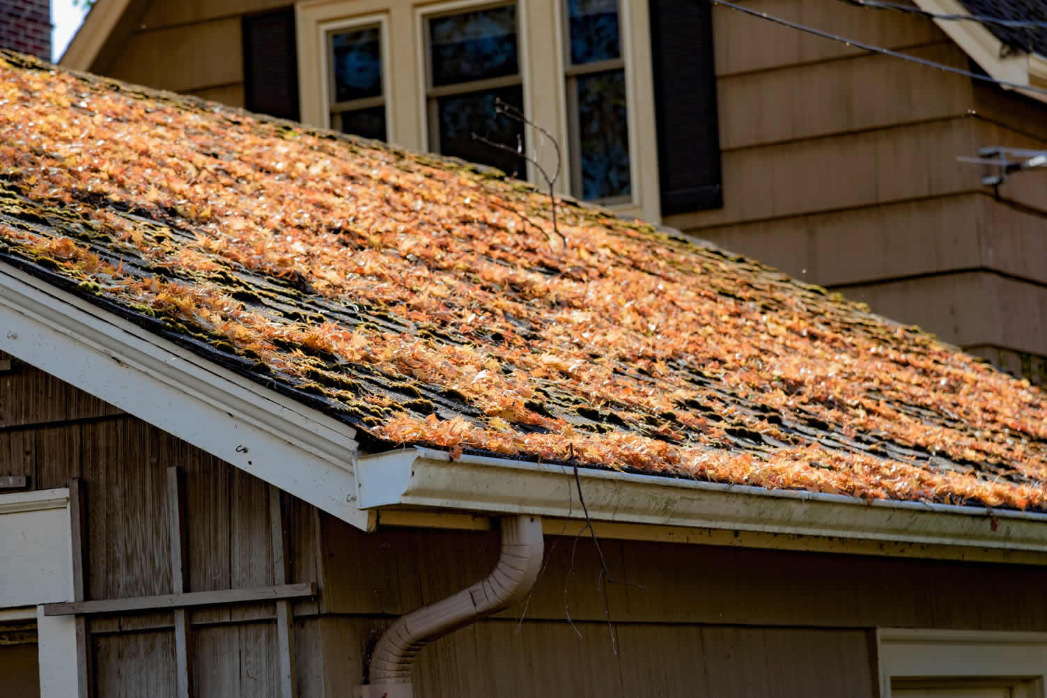 DIY roofing tips