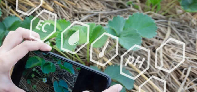 Creating Smart Landscaping For The Future