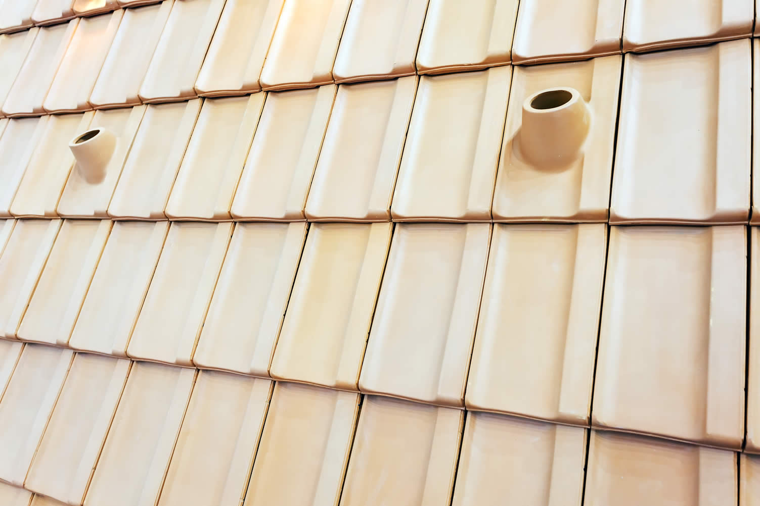 alternative roofing ideas for your home