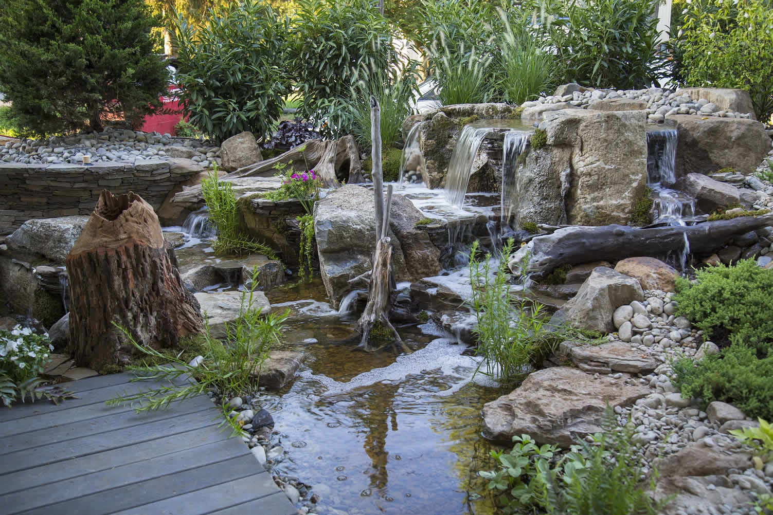 how to know if your pond can support koi